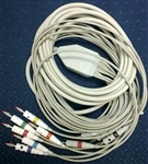 Resting Patient Cable, 10-lead with banana plugs; for CARDIOVIT AT-10 and CS-200